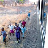 Efter at Rovos Rail-toget har forladt Victoria Falls forandrer landskabet sig ikke de næste mange hundrede kilometer.