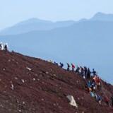 I højsæsonen snegler klatrerne sig mod toppen som lange slanger. Fotos: Lars Henrik Aagaard