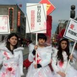 Kinesiske kvinder forsøger sig med mange forskellige optrin for at skærpe opmærksomheden om deres kamp for egne rettigheder. Nogle iklæder sig brudekjoler smurt ind i teaterblod.