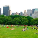 Den bedste måde at opleve storbyer som New York er i virkeligheden at gøre som de lokale. Via hjemmesiden Airbnb.com kan du leje dig ind i lokales private hjem og herigennem få tips til gode oplevelser.