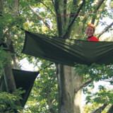 Sov i hængehængekøjer i toppen af træerne.