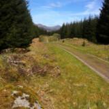 Vejen fører kun et sted hen, det er bare med at snøre vandreskoene og komme ud i det skotske højland.