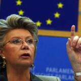 EUs telekommissær, Viviane Reding, giver teleselskaberne under fem måneder til selv at få priserne ned - ellers slår hun til. Foto: Dominique Faget/AFP