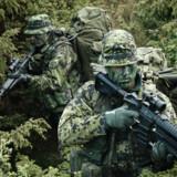 Medlemmer fra Hjemmeværnets særlige patruljeenhed i arbejdstøjet. De er specialtrænede og nyttige for både Frømandskorpsetog Jægerkorpset.