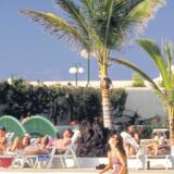 Danskere - specielt de ældre - er vilde med Gran Canaria og tager af sted for at slappe af og nyde tilværelsen. Men en del af dem vender hjem fra ferien i en kiste.
