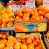 Israels klima og beliggenhed i den sydøstlige ende af Middelhavet forsyner markeder, husmødre og madtempler med de bedste råvarer, man kan høste.