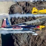 Et Red Bull-fly med vinger.