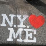 Netværket, Global Greeter Network, blev startet af Lynn Brooks, der var træt af New Yorks negative image. Hun begyndte derfor at guide turister rundt i hendes elskede New York for at give dem et anderledes indtryk af byen.