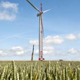 Siemens Wind Power har sikret sig kontrakter til tre vindmølleprojekter i Skotland og Irland.