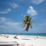 Strandene på Yucatan-halvøen er generelt fantastiske, og her kan man kombinere ren afslapning med oplevelser i fortiden, for flere af de allerbedste strande ligger tæt på Maya-ruinerne.