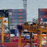Det er blandt andet containere fra samarbejdspartnerne Maersk Line og MSC, der er årsag til fremgangen hos PTP.