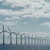 DONG var eneste byder på den dyre Anholt havvindmøllepark i 2010. Nu skal Horns Rev 3 bygges. DONG er med, men ingen af de øvrige godkendte aktører vil fortælle, om de har budt på parken.