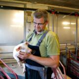 Henrik Mortensen, formand for de Danske Svineproducenter.