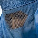 Arkivfoto. Martin Henriksen (DF), Naser Khader (K) og Marcus Knuth (V) vil alle have indført et burkaforbud i Danmark. Tidligere har et stort flertal ellers været imod.