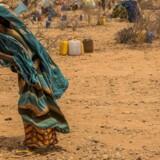 Klimaforandringer sender millioner af mennesker på flugt, lyder det i ny rapport fra World Economic Forum.