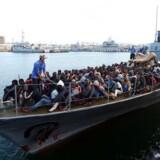 Illegale indvandrere ankommer til Tripoli.