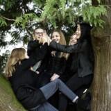 Rosa, Rebekka, Caroline, Anna og Zenia fra 6. kasse på Per Gyrum Skolen i Nivå bruger det store spisefrikvarter i thuja træets top. Der er ingen mobil i lommerne, for den er låst inde hele skoledagen.
