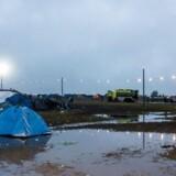 Færre deltagere på Roskilde Festival har mistet telefon, penge og andre ting i forhold til tidligere.