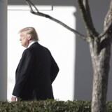 USA's præsident, Donald Trump, overvejer nu at indføre en 20 procents afgift på varer fra Mexico for at finansiere den mur, han vil bygge langs USA's sydlige grænse.