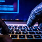 Flere tusinde danske netadresser bliver hvert år overtaget af hackere, der udskifter siderne med deres egne budskaber. Arkivfoto: Iris/Scanpix