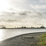 Kysten ved Charlottenlund nord for København. I horisonten ses Nordhaven, hvor sand fra Øresunds havbund i stor stil er blevet brugt til byudvidelse.