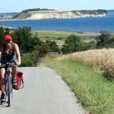 »Den virkningsfulde løsning er ikke kødløse dage og cykelferier.«