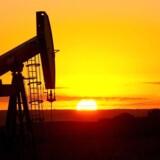Arkivfoto: Prisen på olie af den amerikanske referenceolie WTI er torsdag kommet under 50 dollar og fortsætter dermed den nedtur, der blev udløst onsdag efter offentliggørelsen af en overraskende stor stigning i de amerikanske olielagre.