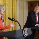 Storbritanniens premierminister Theresa May og USAs præsident Donald Trump lovede hinanden at arbejde på deres to landes særlige forbindelse. Foto: AFP