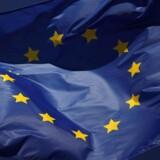 Den danske model bliver blåstemplet i EU-Parlamentets fornyelse af direktiv, siger dansk parlamentariker.