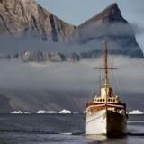Højtuddannede danskere er i høj kurs på Grønland, og flere vælger at turen turen derover.