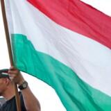 Demonstranter på gaden i Budapest. REUTERS/Bernadett Szabo