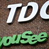 TDC afviste to bud på selskabet uden aktionærernes kendskab. Efter læk til pressen lagde de pres på.