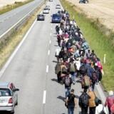 »Hvilken politiker tror i fuldt alvor, at ret mange flygtninge vil rejse hjem, hvis deres hus er væk, deres by ligger i ruiner, de er politisk uønskede i deres by/land, og de i øvrigt ikke har økonomiske midler til at bygge en tilværelse op?« Arkivfoto