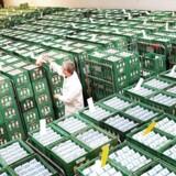 Danmarks Statistiks seneste offentliggjorte tal for økoeksporten er for året 2015. Her tegnede Tyskland og Sverige sig for henhenholdsvis 38 procent og 20 procent af den danske økoeksport. I Kina og Mellemøsten bliver der ligeledes købt en del danske økovarer.