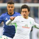 Thomas Delaney og Werder Bremen møder på lørdag Hamburger SV i Bundesligaen. Scanpix/Patrik Stollarz
