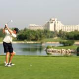 Jebal Ali Golf Resort & Spa. Påfuglene har været et vartegn for resortet siden åbningen for 30 år siden. I dag er her cirka 200 af dem. Foto: Scandpix