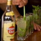 Der er masser af grunde til at holde igen med alkoholen, når du er på ferie. Se bare herunder.