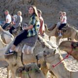 Mira på kamelridetur i den egyptiske ørken. Rideturen er en del af udflugten »Desert Night«, der var en spændende oplevelse for både mor Ninne og de to børn.