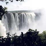 I Botswana og Namibia kan man opleve det ægte Afrika i dets mest ekstreme form.