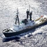 Her er »Lone Ranger« på havet. Den kan nu blive din. Foto fra salgsmateriale: Ycoyacht.com