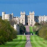 Med på listen er turisten, der undrer sig over, hvorfor Windsor Castle er bygget så tæt Heathrow-lufthavnen?