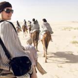 Rejseliv.dk's skribent på kameltur i Sahara (vi ved godt, at det er dromedarer, men det bliver mellem os...)