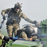 »Night Hawk« er en multinational militærøvelse for europæiske specialstyrker, der er blevet afholdt hvert andet år siden 2000. I alt deltager mere end 1.300 soldater fra syv forskellige nationaliteter, herunder 200 danske specialstyrker fra Jæger- og Frømandskorpset. Øvelsen varer i to uger fra den 22. september til den 3. oktober og finder sted i Aalborg og Korsør. Militærøvelsen har til særligt fokus at træne enhederne i at samarbejde og udnytte hinandens kapaciteter til at træffe beslutninger og udføre specifikke opgaver. Blandt opgaverne i Operation »Night Hawk« skal de deltagende styrker blandt andet trænes i indfangning af fjendligt militær og befrielse af gidsler. Udover de 1.300 soldater, bruges der også mere end 20 helikoptere, diverse køretøjer og en af søværnets fregatter i øvelserne.