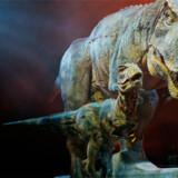 """Det imponerende show """"Walking with dinosaurs"""" er nu nået til Berlin. Hvis du ikke nåede at se det i København, så er det bare afsted."""