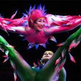 Cirque du Soleil er verdensberømte for deres unikke akrobatiske optrædender og har siden sin begyndelse i 1984 begejstret over 50 millioner tilskuere.