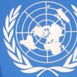 FN tvinger erhvervslivet til at overholde menneskerettigheder.