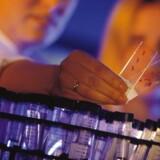 Genmab og GlaxoSmithKline (GSK) har indsendt en ansøgning til de regulatoriske myndigheder i USA for Arzerra.
