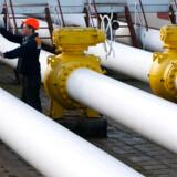 De danske myndigheder vil angiveligt i dag give tilladelse til, at den russiske energimastodont Gazpromsammen med tyske og en hollandsk partner lægger en gasledning gennem dansk farvand kun ti kilometer fra Bornholms østkyst.