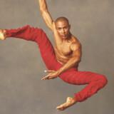 Den moderne ballet. Alvin Ailey American Dance Theaters danser, Yannick Lebrun.