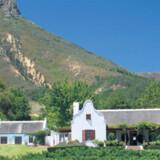 Klassisk overdådig vinejendom i den traditionelle kapstil med stråtag og renæssancegavle.